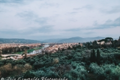 Rustic Florence 1