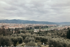 Rustic Florence 2